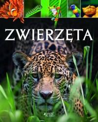 Zwierzęta - okładka książki