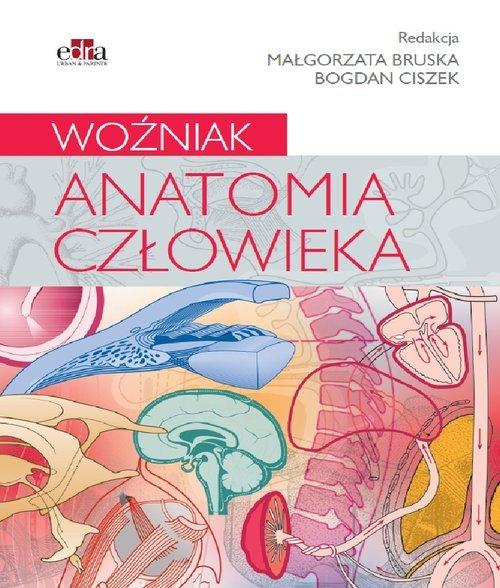 Anatomia człowieka. Woźniak - okładka książki