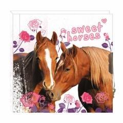 Pamiętnik z kluczykiem konie - okładka książki