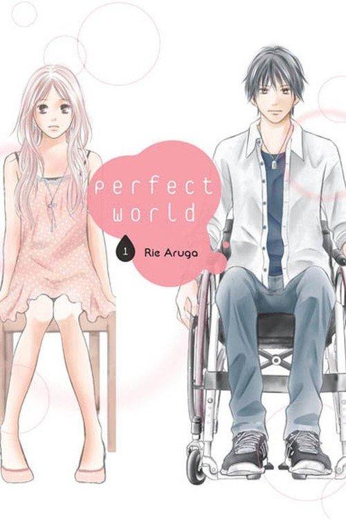 Perfect World #01 - okładka książki