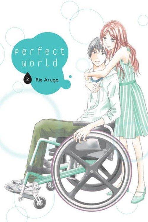 Perfect World #02 - okładka książki