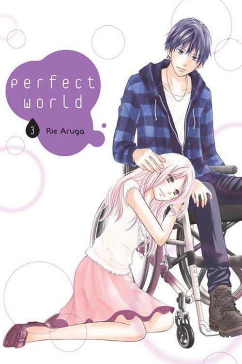 Perfect World #03 - okładka książki