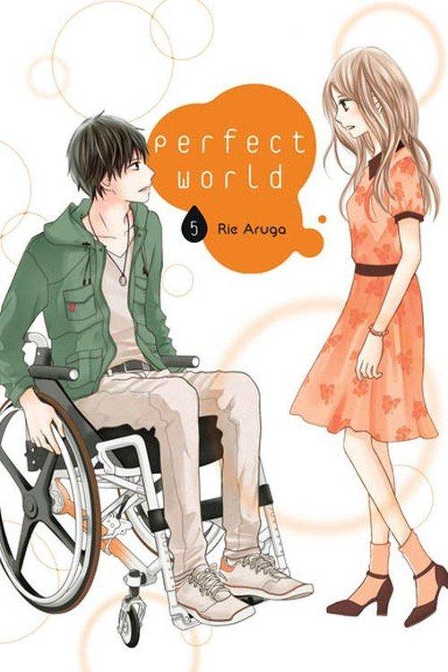 Perfect World #05 - okładka książki