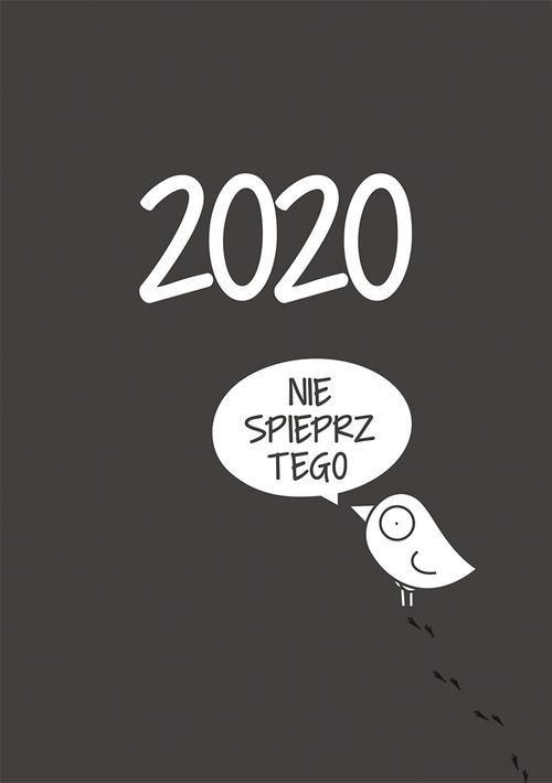 Kalendarz 2020. Ptaszek Staszek - okładka książki
