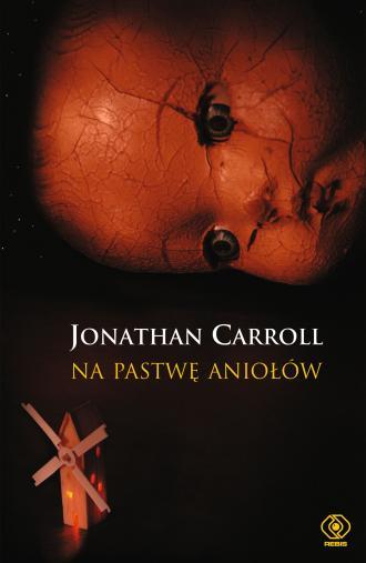 Na pastwę aniołów - okładka książki