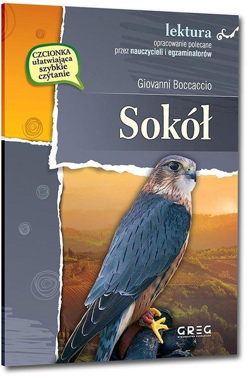 Sokół. wydanie z opracowaniem i - okładka podręcznika