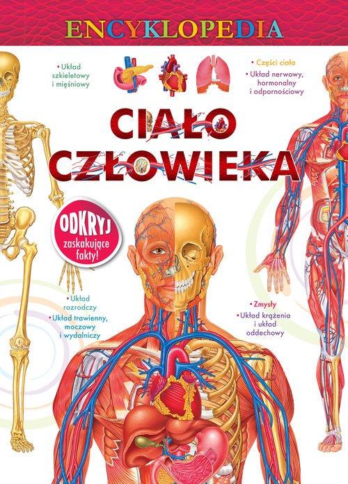 Encyklopedia. Ciało człowieka - okładka książki