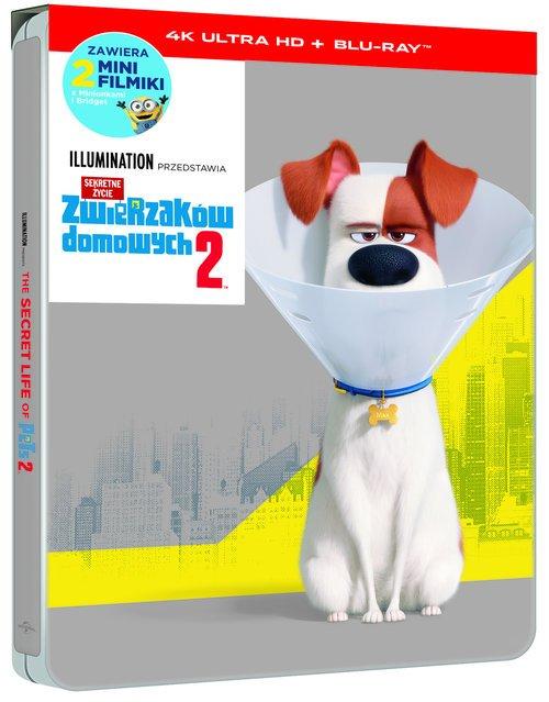 Sekretne życie zwierzaków domowych - okładka filmu