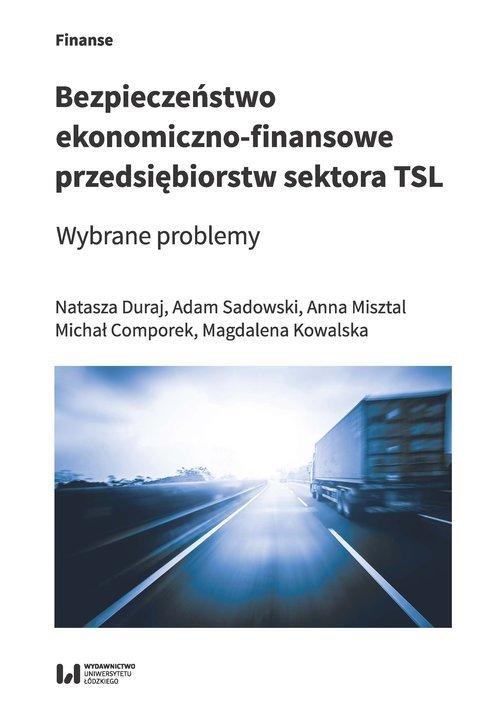 Bezpieczeństwo ekonomiczno-finansowe - okładka książki