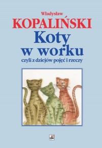 Koty w worku czyli z dziejów pojęć - okładka książki