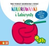Kolorowanki i labirynty - okładka książki