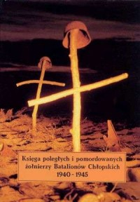 Księga poległych i pomordowanych - okładka książki