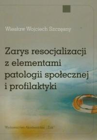 Zarys resocjalizacji z elementami patologii społecznej i profilaktyki - okładka książki