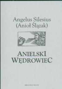 Anielski wędrowiec - okładka książki
