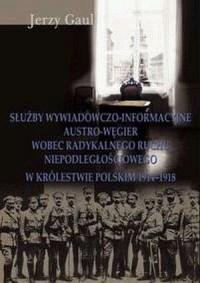Służby wywiadowczo-informacyjne Austro-Węgier wobec radykalnego ruchu niepodległościowego w Królestwie Polskim 1914-1918 - okładka książki