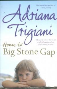 Home to Big Stone Gap - okładka książki