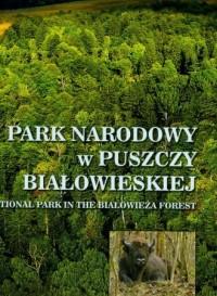 Park Narodowy w Puszczy Białowieskiej - okładka książki
