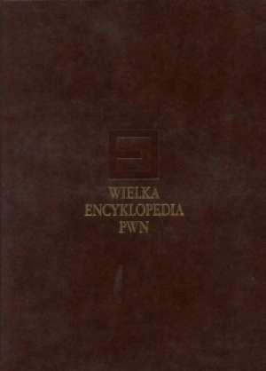 Wielka Encyklopedia PWN. Tom 3 - okładka książki