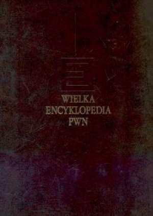 Wielka Encyklopedia PWN. Tom 23 - okładka książki