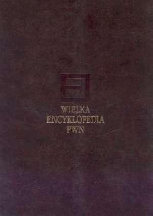 Wielka Encyklopedia PWN. Tom 27 - okładka książki