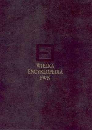 Wielka Encyklopedia PWN. Tom 10 - okładka książki