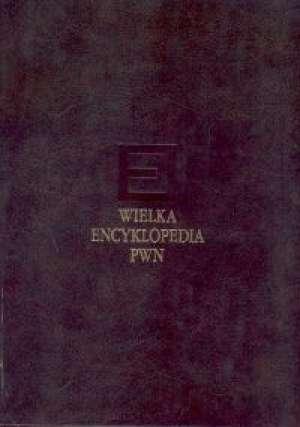Wielka Encyklopedia PWN. Tom 11 - okładka książki
